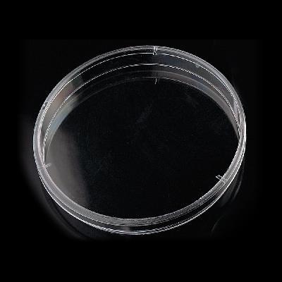 Plaques Petri 140 x 20 mm