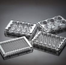 Placas de pocillos para cultivo celular