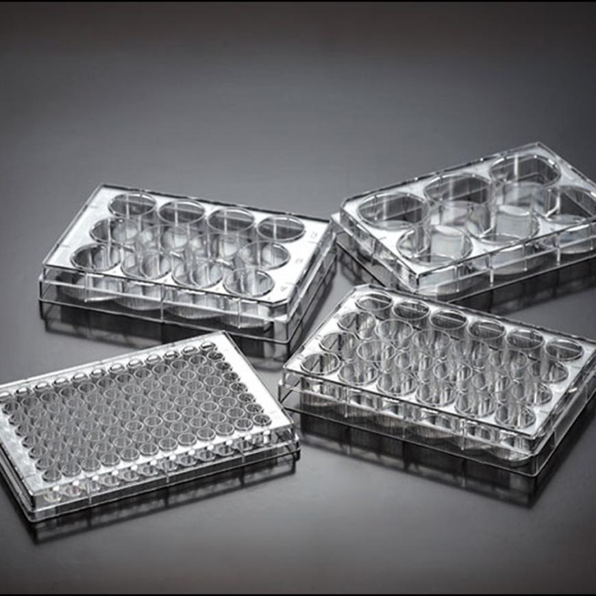 placas-de-pocillos-para-cultivo-celular