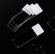 Adhesion microscope slides